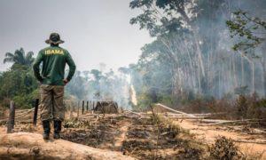 O gemido da Amazônia como grito da Terra e o papel das igrejas