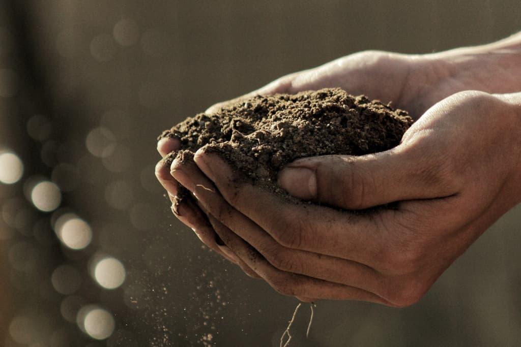 Para além das Nações, Construir a Terra