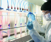 A beatificação do capital pela  indústria de  fármacos e  biotecnologia